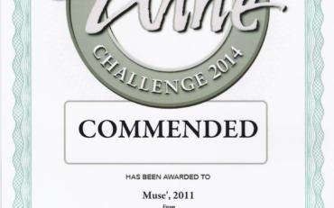 International challenge 2014 | Musè 2011